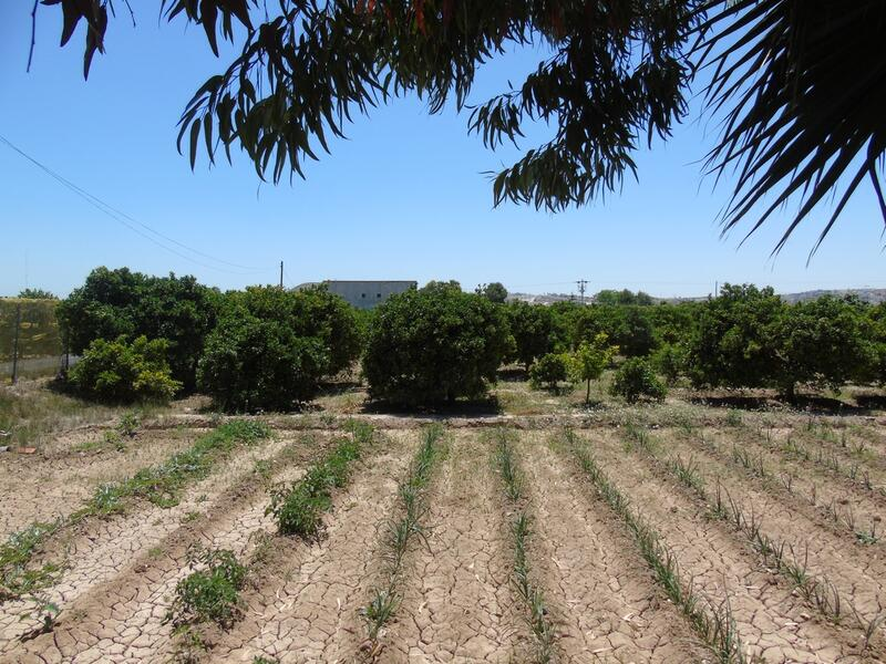 Land for sale in Rojales, Alicante