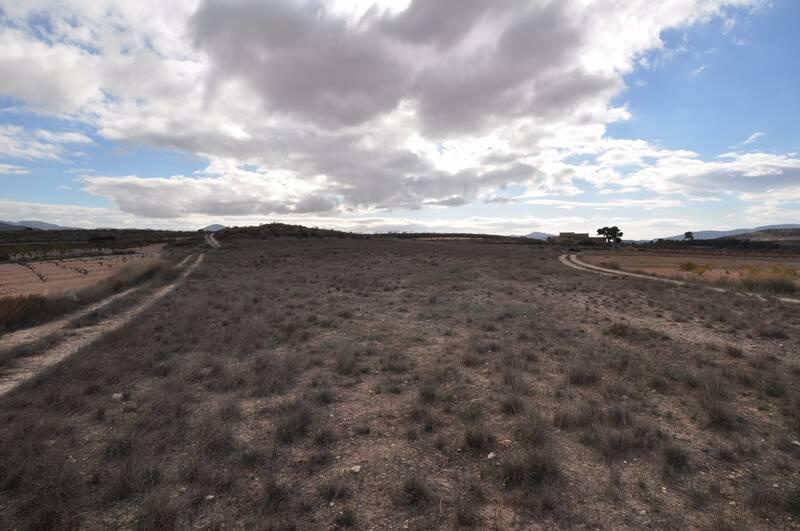 Land for sale in Pinoso, Alicante